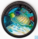 "Palau 1 dollar 2008 (PROOF) ""Regal Angelfish"""
