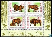 WWF - Wisent or European Bison