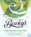 Pure Sencha Green Tea