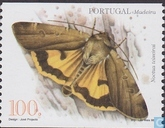 Postage Stamps - Madeira - Butterflies