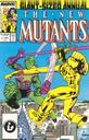 New Mutants, the: annual 3