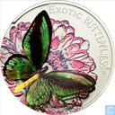 "Tokelau Islands 5 dollars 2012 (PROOF) ""Ornithoptera Priamus"""
