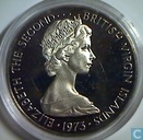 Maagdeneilanden Britse 50 cent 1973 (PROOF)