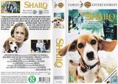 DVD / Video / Blu-ray - VHS video tape - Shailo