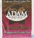 Raspberry Fields Tea