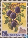 Timbres-poste - Saint-Marin - Fruits