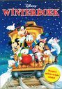 Disney winterboek