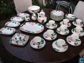 Villeroy & Boch Wildrose servies