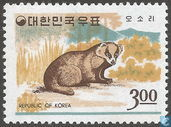 Korean animals