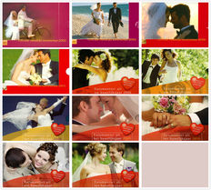"The Netherlands - Year packs 2002/2012 (11 different) ""Marriage sets"" with special medal"