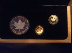 "Canada – 5 dollars 1989 (x3) ""Coin set 10 years of Maple Leaf"" – Silver, Gold en Platinum"