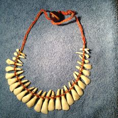Ethnic necklace made of teeth, Manaus, Brazil