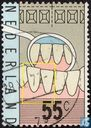 Dental examination 1877-1977
