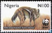 WWF - Striped Jackal