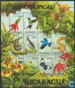 Animals and plants of the tropical forest