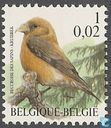Postage Stamps - Belgium [BEL] - Red Crossbill