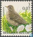 Postage Stamps - Belgium [BEL] - Meadow Pipit