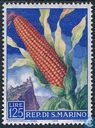 Postage Stamps - San Marino - Fruits