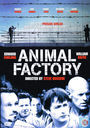 DVD / Video / Blu-ray - DVD - Animal Factory
