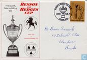 Benson & Hedges Cup