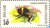 Postage Stamps - Belgium [BEL] - Buff-tailed Bumblebee