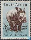 South African animal world