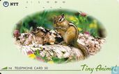 """Tiny Animal"" - Chipmunk"