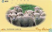 Tiny Animals - Sheep