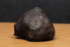 Meteorite - Mbale - Valid Chondrite, L5-6 - Observed Fall - Uganda, Ostafrica - 14. August 1992, 15:40 local time - very rare piece with cut and black fusion crust - 3.00 x 1.95 cm - 16.10 g