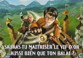 "2692a - Harry Potter ""Sauras-tu maitriser le vif d'or...?"""