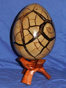 "Fine Septaria Egg with removable ""lid"" -  15 x 12.5 cm - 2.490 kg"