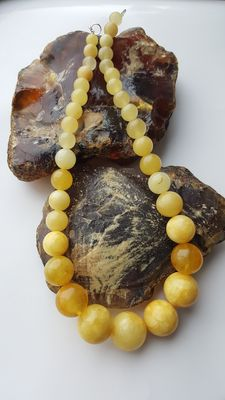 Natural baltic amber antique butterscotch egg yolk necklace 45g