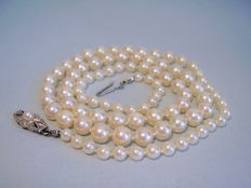 Pearl necklace, epoch, genuine Japanese Akoya pearls