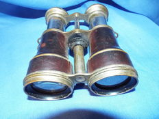 Binoculars with case