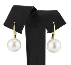 18 kt yellow gold earrings with round Australian South Sea pearls (approx. 10.9 mm)