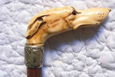 Dandy cane in hawthorn wooden with a straight handle. Head of a greyhound in ivory. Eyes of sulfide. Ring in silver metal. ca. 1900 - 20