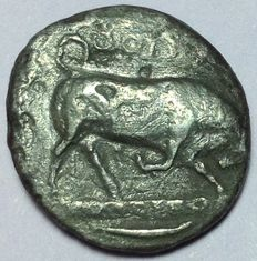 Greek Antiquity - Italy Southern Lucania - Thourioi (Thurium)  - AR Nomos - 4th Cent. BC - Head Athena / Bull
