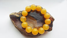Amber bracelet butterscotch egg yolk yellow color