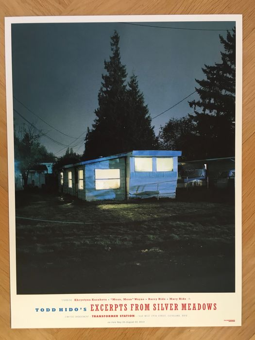 """2013 Exhibition Poster 16/"""" x 12/"""" **NEW** TODD HIDO /'White Cat/' Silver Meadows"""