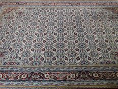 "Bidjar Indo - Herati - 300 x 197 cm. - ""light oriental carpet with baby-blue in excellent condition""."