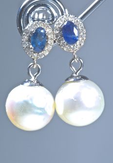 18 kt. White gold earrings set with 32 diamonds (0.20 ct) and two blue sapphires in A colour weighing 0.70 ct, decorated with genuine South Sea (Australian) pearls of 10.40 mm in diameter - No reserve price