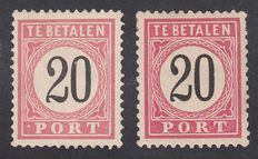 "Dutch East Indies 1882 - Postage stamps with plate flaw ""open list"" and ""point-PORT '- NVPH P9fbD + P9faD"