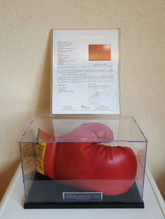 Muhammad Ali (RIP) - Original signed and dated boxing glove in display case + name plate + Notarial Letter Of Authenticity (LOA) established by JSA (James Spence).