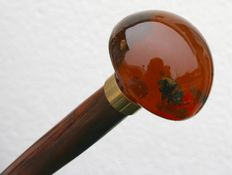 Cane with amber knob, with a bee and various flowers inclusions  - France - ca. 1930