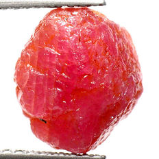 Natural 100% Unheated Ruby Rough Specimen - 10 x 9 x 6mm - 1,22g - 6,1ct.