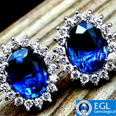 Fine Natural 4.31 ct Royal Blue Sapphire And Diamond Stud Earring in 18 kt White Gold - EGL Certified - No Reserve