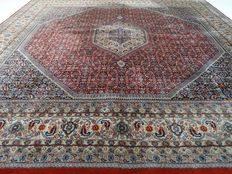 "Indo Bidjar – 250 x 254 cm – ""Square rug in beautiful, virtually unused condition"""