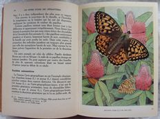 Papillons  - 3 volumes - 1930/1952