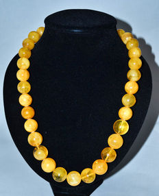 Baltic amber necklace butterscotch egg yolk color, 111 gram
