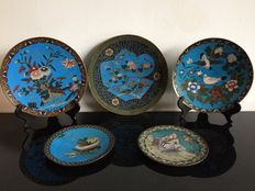 A collection of 5 cloisonné chargers - Japan - late 19th century